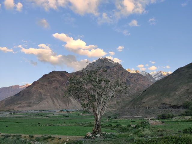 ultimate travel guide to spiti valley losar