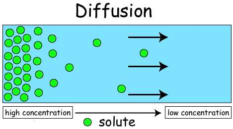 Definition of Diffusion