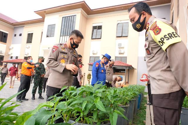 Kapolda Jambi Tinjau Kebun Ketahanan Pangan Polres Tanjabbar dan Panen Kangkung dan Cabai