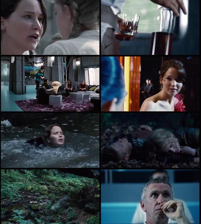The Hunger Games 2012 Hindi Dual Audio 480p BRRip