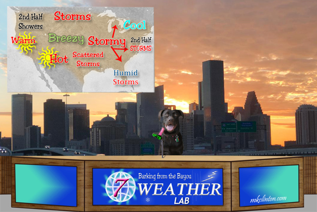 Labrador Retriever giving the weather report