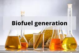 Biofuel generation review