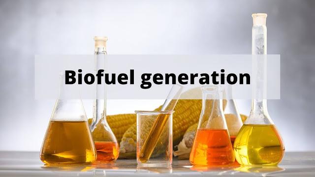 Biofuel generation