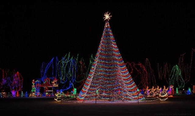 50,000 lights adorn this tree at the Kiwanis Holiday Lights in Mankato, Minnesota! Image courtesy of Family Rambling.