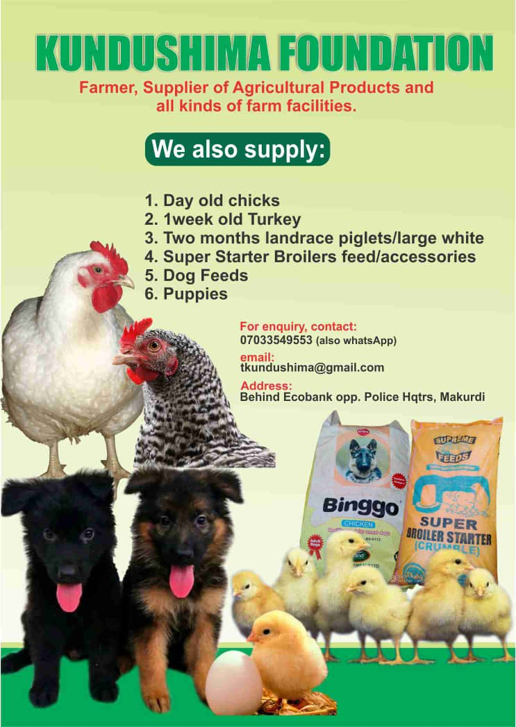 [Business] Kundushima Foundation - Dealers of all Livestocks and agricultural products #Arewapublisize