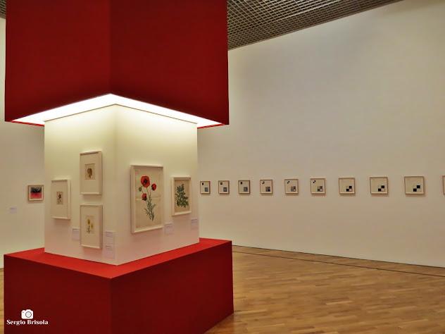 Fotocomposição com uso de espaço expositivo na Pinacoteca de São Paulo