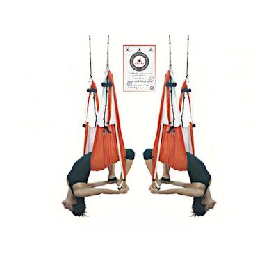 diploma yoga, diploma aeroyoga, diploma aerial yoga, diploma aeropilates, formação aeroyoga, formação aeropilates, cursos yoga aéreo, cursos aerial yoga, brasil, portugal, sao paulo, rio, lisboa