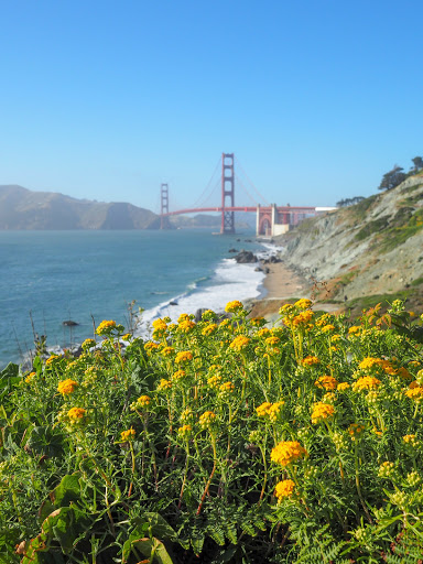 80+ Things to do in San Francisco with Kids