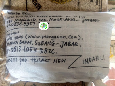 Benih Pesanan SOLIKHIN Magelang, Jatim. (Setelah packing)