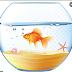 Ứng Dụng Gây Tranh Cãi, App Này Cá Càng Nhiều Thì Điện Thoại/pc Của Bạn Càng Mạnh.