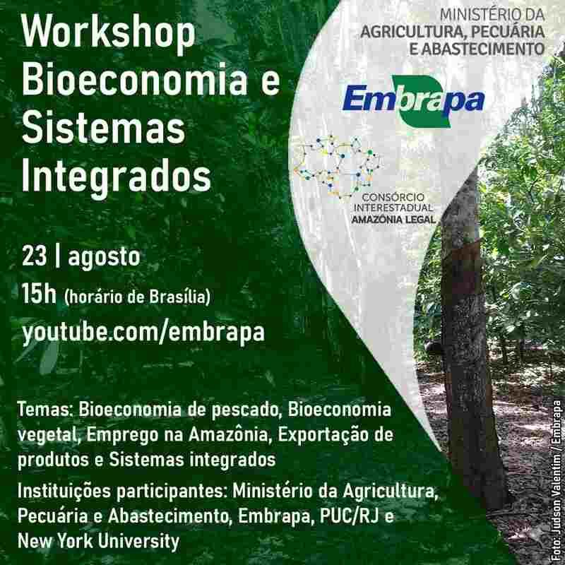 Nesta segunda-feira, 23 de agosto, a partir de 15h de Brasília, acontece workshop sobre bioeconomia e sistemas integrados na Amazônia. No evento, a Embrapa apresentará ao Consórcio Interestadual da Amazônia Legal pesquisas que tem desenvolvido nessas áreas na perspectiva de medidas de fortalecimento de cadeias produtivas de valor da biodiversidade amazônica, associando-se à prevenção e ao combate ao desmatamento na região.