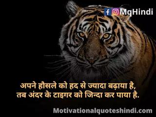 Tiger Status