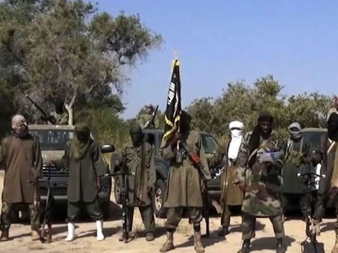ISWAP-Boko Haram Appoints New Commanders, Imposes Taxes In Borno