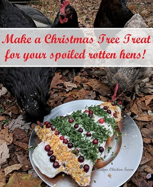 Make chicken treats