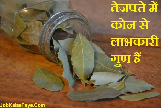 What are the beneficial properties in bay leaves