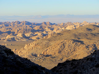 View north from Ryan Mountain Trail, Joshua Tree National Park