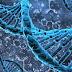 «Γραμμένη» στα γονίδια η ιδανική δίαιτα
