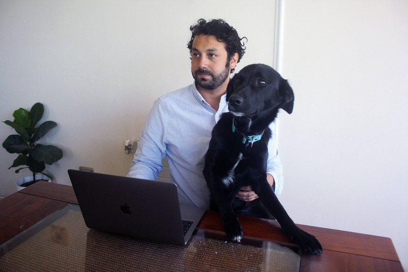 Funcionaria judicial registra en acta patatús de perro de abogado demandante