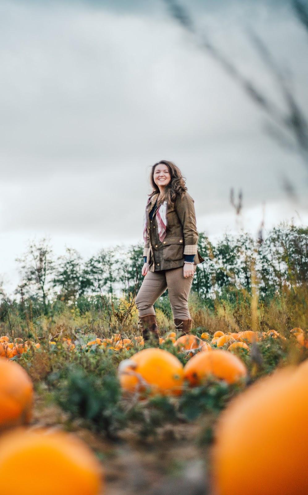 pumpkin patch picking oxford oxfordshire millets farm barbour liquid grain
