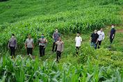 Kapolda Sulawesi Barat Manfaatkan Situasi Pandemi Covid-19 Dengan Berkebun