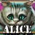 [XE-88] ALICE