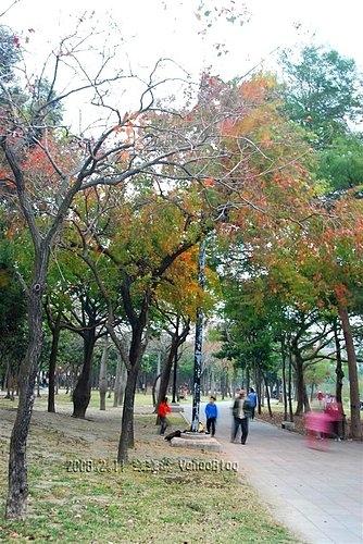 巴克禮紀念公園|臺南文化中心對面