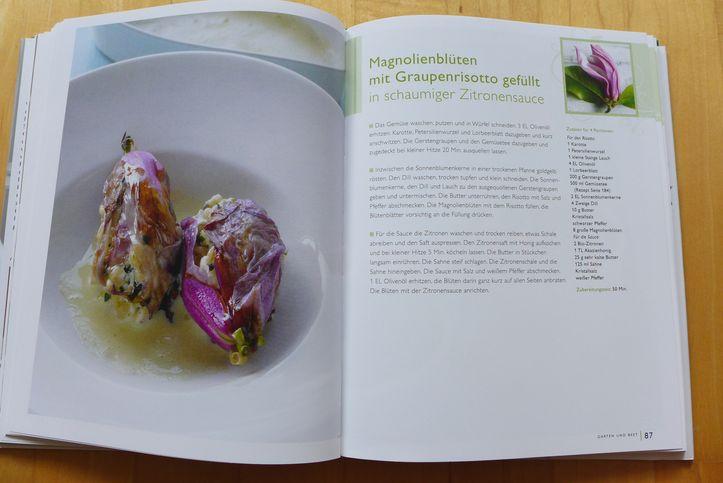 Meine-Kräuterküche-gefüllte-Magnolienblüten-Steiermarkgarten