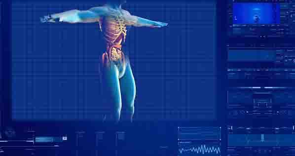 Fungsi dan Penjelasan Lengkap Sistem Pencernaan Makanan pada Manusia