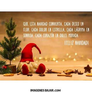 Imágenes de Feliz Navidad para desear Felices Fiestas Bonita tarjeta con árbol navideño y papá Noel para enviar a grupos de Whatsapp
