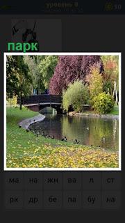 небольшая река в парке и мост через неё с растительностью на берегах