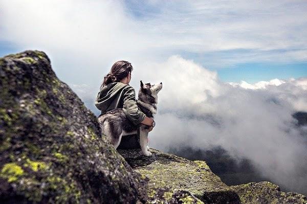 La exposición temprana a los perros puede disminuir el riesgo de desarrollar esquizofrenia.