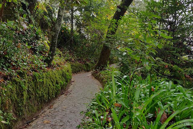 Quinta de Regaleira photos gardens