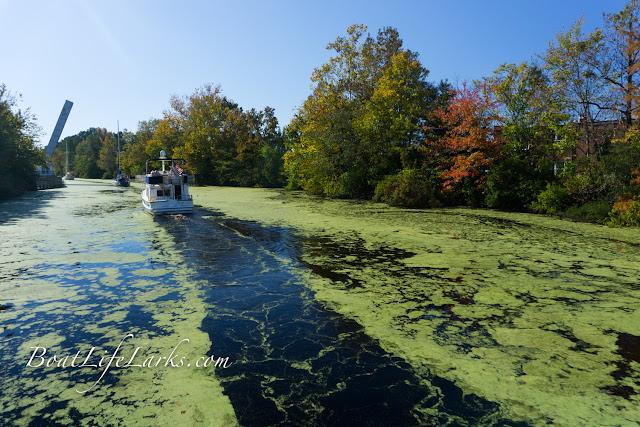 Boats approach Deep Creek Bridge during fall