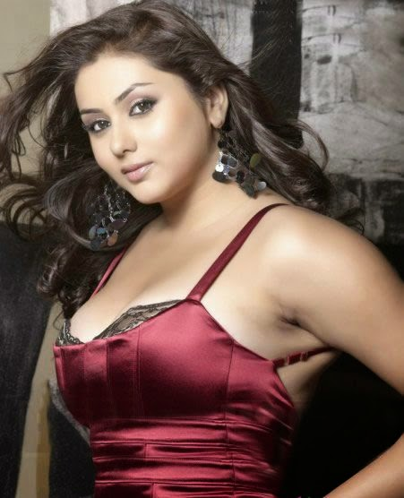 11 hottest pictures of the super hot South Actress Namitha