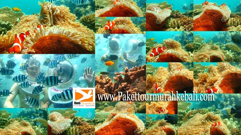 Seawalker Bali Seawalker Sanur Waterwalk Sanur - Sanur underwater