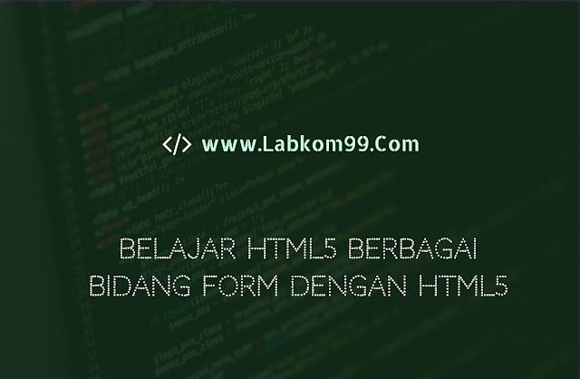 Belajar HTML5 Berbagai Bidang Form Dengan HTML5