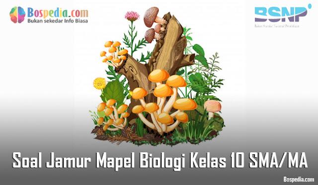 Soal Jamur Mapel Biologi Kelas 10 SMA/MA