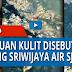 Fakta-fakta temuan video dari kulit manusia yang disebut penumpang Sriwijaya Air SJ 602