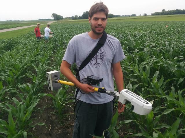 sensor-based nitrogen management Minnesota