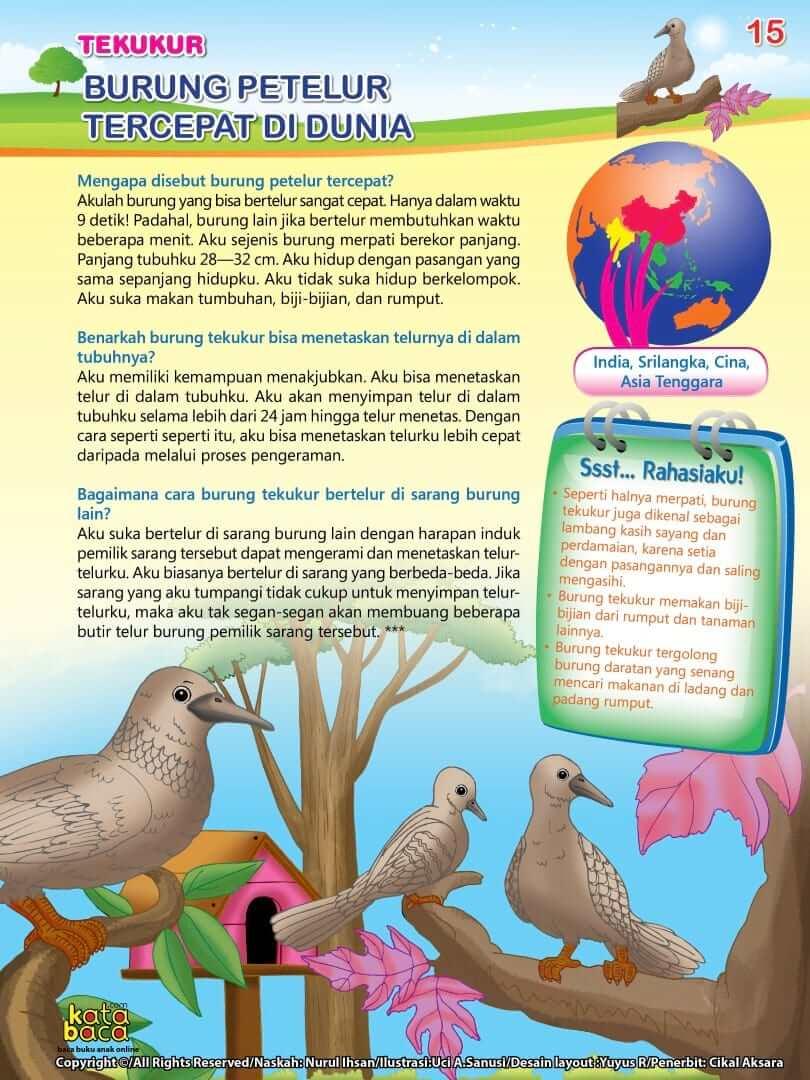 Burung Tekukur - Burung Petelur Tercepat di Dunia