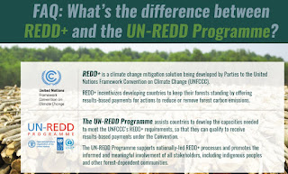 REDD(Reducing Emissions from Deforestation and forest Degradation)