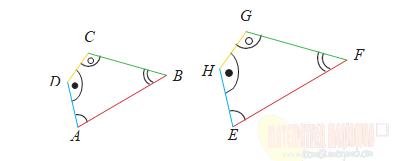 Modul BDR Matematika ! Menentukan Dua Bangun Sebangun atau Tidak Materi Kesebangunan Kelas 9