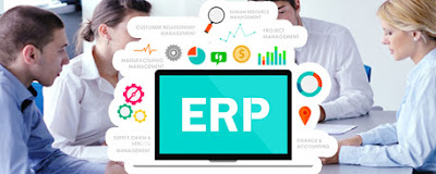 About ERP Services and ERP Consultant