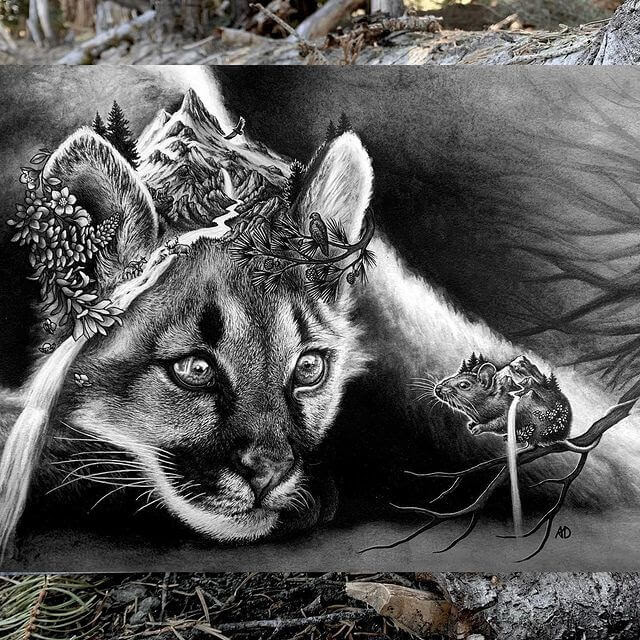 09-Wild-cat-and-mouse-Alyse-Dietel-www-designstack-co