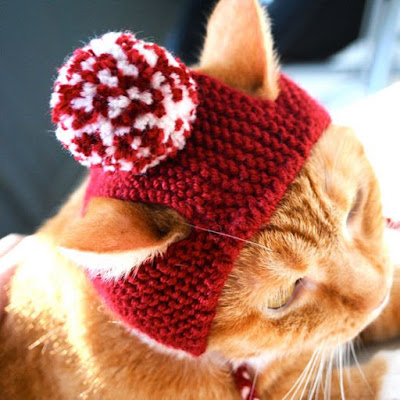รูปที่ 1 แฟชั่นหมวกแมว ไอเดียงานประดิษฐ์สำหรับคนรักแมว