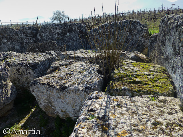 Kleones Corinthie Peloponnese Grèce