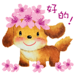 Bubble Dog-Chinese