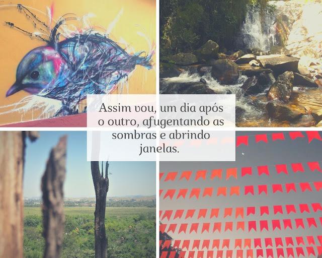 Crônica inspirada em poesia de Cecília Meireles