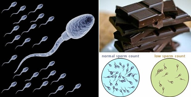 6 Super Foods To Increase Sperm Count, Production, and Motility