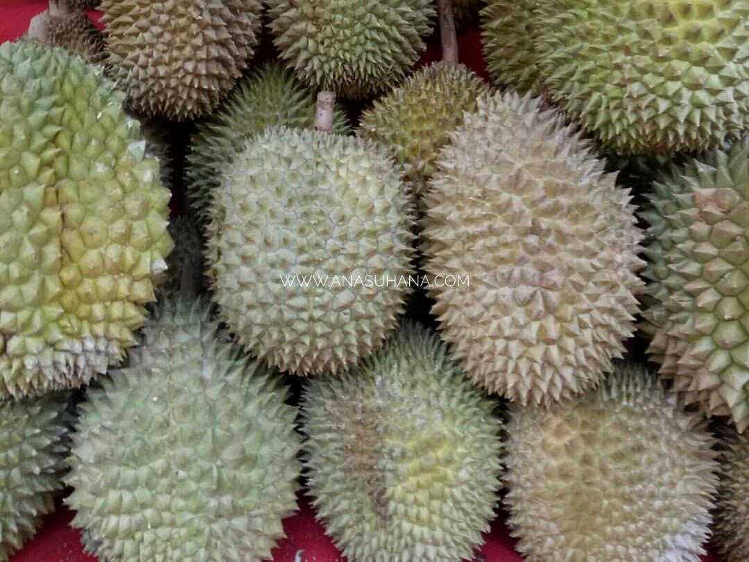 Nikmat Bila Dapat Makan Durian